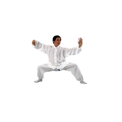 Tai Chi Uniform Ivory