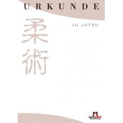 Certificate Ju Jutsu Sand